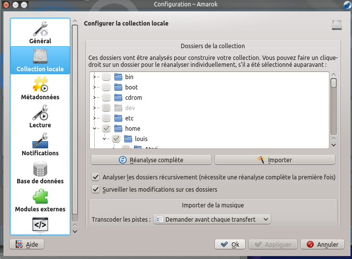File:Amarok 2.8 ConfigurationDialogLocalCollection FR.png