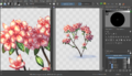 Krita multiple views.png