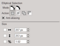Elliptical Selection Tool Options.PNG